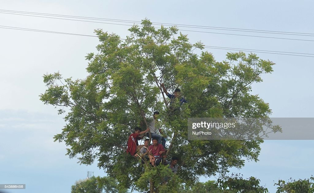 Tribal Naga men climb on a tree to watch the public funeral service in honour of Isak Chishi Swu, Chairman of the NSCN-IM at Dimapur, India north eastern state of Nagaland on Thursday, June 30, 2016. Thousands of mourners pay tribute to late Isak Chishi Swu chairman of the NSCN-IM who dies at a private hospital in Delhi on June 28.