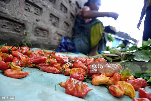 A tribal vendor displays 'Bhut Jolokia' claimed to be the world�s hottest chilli at a local market in Guwahati the capital city of the northeastern...