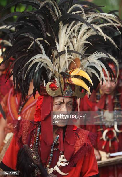A tribesman from Indonesia's Sulawesi island clad in traditional hornbill headgear participates in a gathering for indigenous communities in Tanjung...