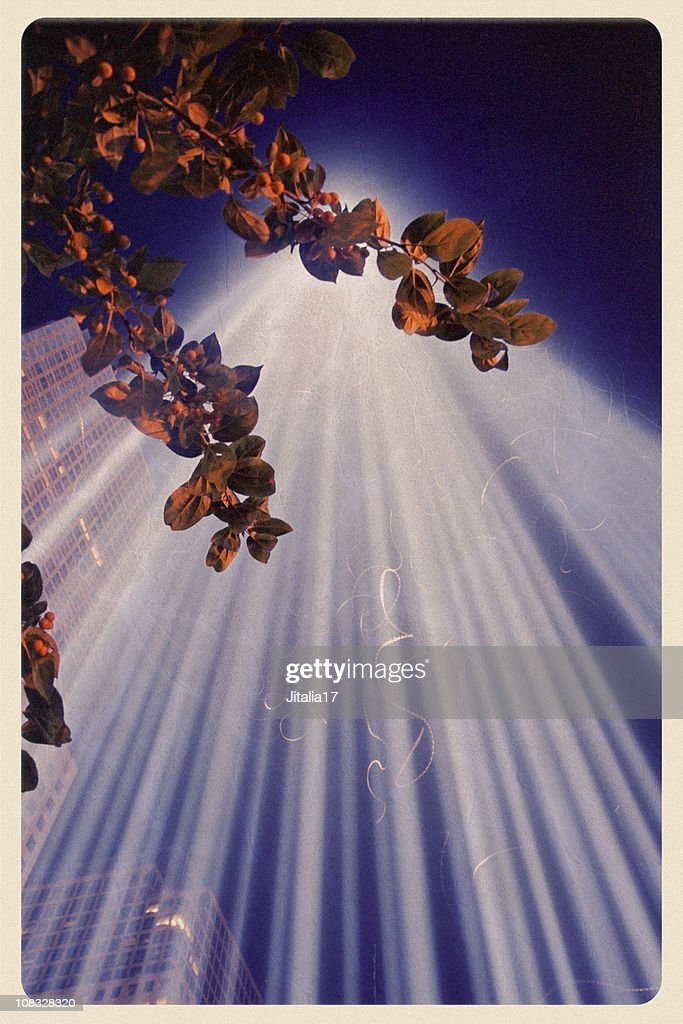Tribute in Lights Postcard : Stock Photo