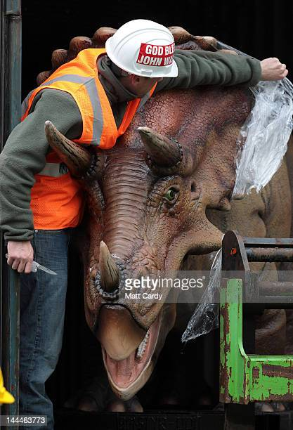 Triceratops dinosaur arrives at Bristol Zoo Gardens on May 14 2012 in Bristol England The twelve dinosaurs which form part of the zoo's summer...