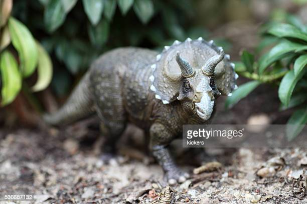Triceratops dinosaur plastic model in plants background