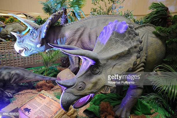 Triceratops replicas are displayed in the Dinosaur Adventure and Learning Experience Park at Tunjungan Plaza on September 15 2015 in Surabaya...