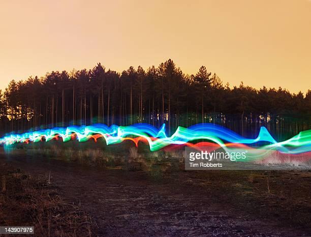 Tri-colour light trail in heath.