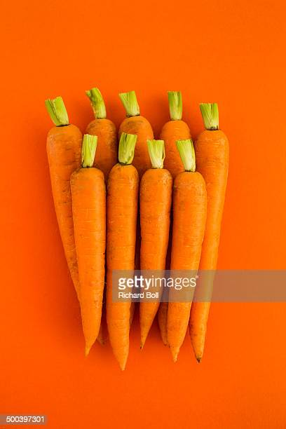 Trimmed carrots on an orange background