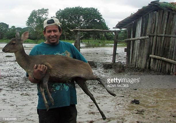 A man carries a deer rescued of a flooded area of Loreto Trinidad Beni 1300 km from La Paz 23 February 2007 Floods and torrential rain that have...