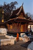 Tripitaka Library in Wat Xieng Thong in Laos