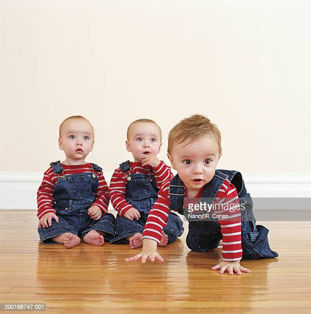 Triplet baby boys (9-12 months) on hardwood floor