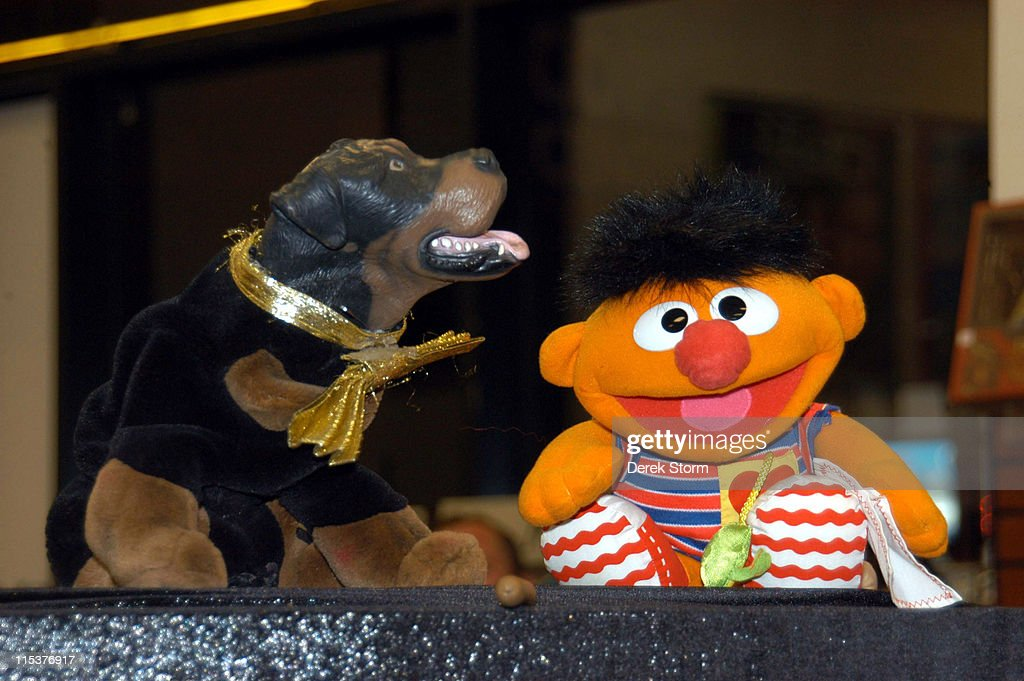 Triumph the Insult Comic Dog and Ernie during Triumph The Insult Comic Dog Promotes His DVD 'Late Night with Conan O'Brien The Best of Triumph the...