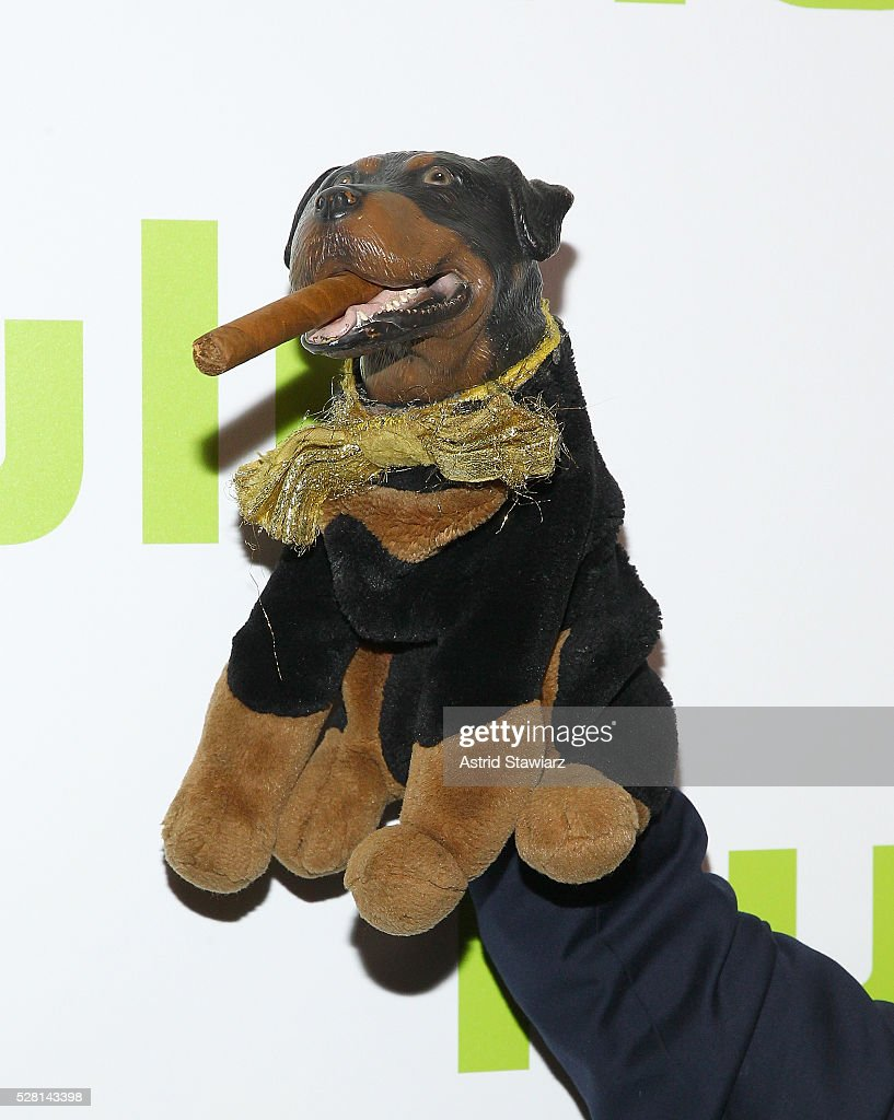 Triumph, the Insult Comic Dog attends the 2016 Hulu Upftont on May 04, 2016 in New York, New York.