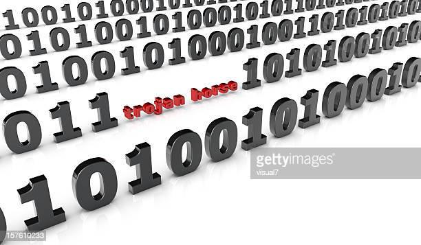Le cheval de Troie dans un code binaire