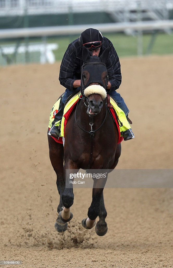 Trojan Nation trains on the track for the Kentucky Derby at Churchill Downs on May 05, 2016 in Louisville, Kentucky.