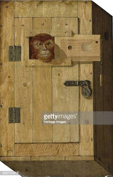 Trompe l'oeil with a monkey in a wooden box Private Collection