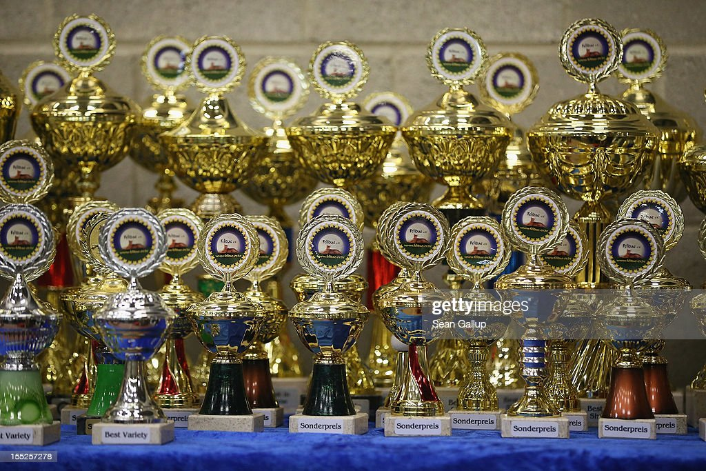 Trophies await winners at a cat competition at the pet trade fair (Heimtiermesse) at Velodrom on November 2, 2012 in Berlin, Germany. Exhibitors are showing the latest trends in collars, snacks and other accessories for cats, dogs and other household pets.