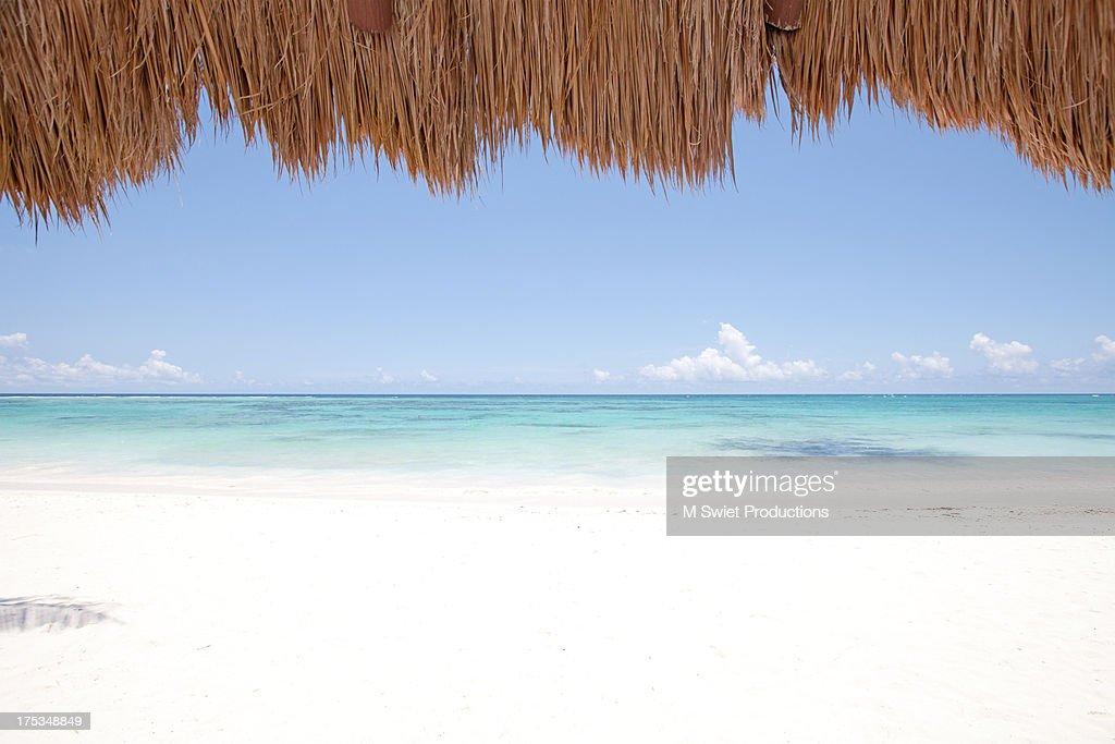 tropic scenic : Stock Photo