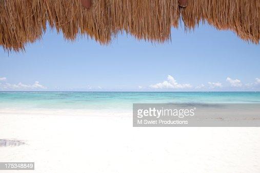 tropic scenic
