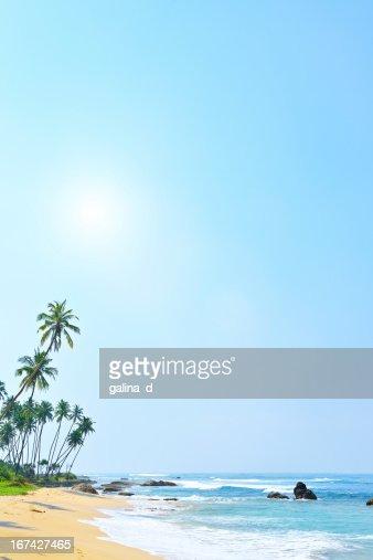 Sfondo spiaggia tropicale : Foto stock