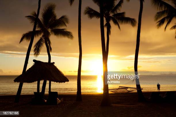 Tropical Beach Getaway Silhouette