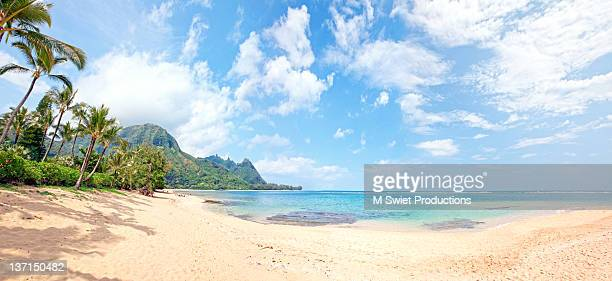 Tropical beach Hawaii