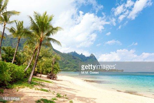Tropical beach Kauai