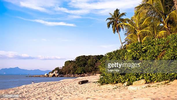 tropical beach on beach