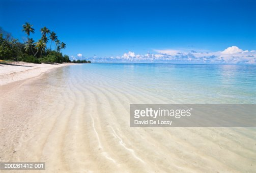 Tropical beach : Bildbanksbilder