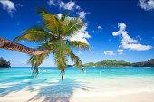 Untouched tropical beach in seychelles, Mahe island