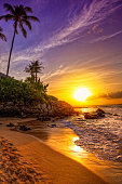 tropical sunset / a tropical beach sunset / seen in hdr
