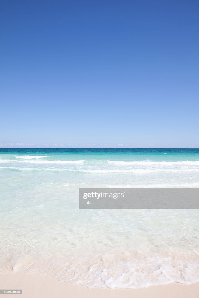 Tropical beach with blue skies in background : Stock Photo