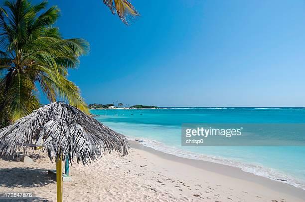Vazio Praia Tropical