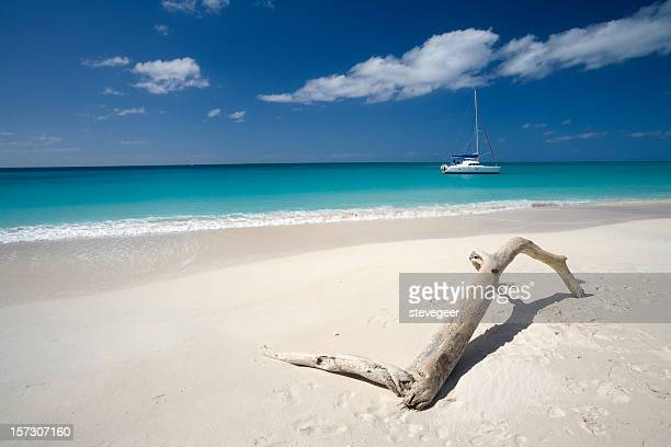 Tropical Beach with Boat and Driftwood