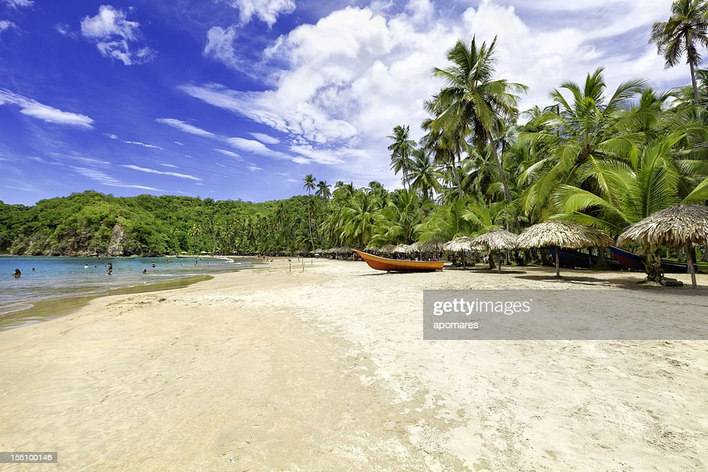 Tropical beach with huts, coconut trees and, deep blue sky : Stock Photo