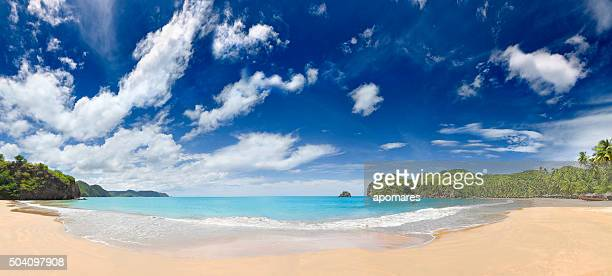 Tropical beach with huts, coconut trees and, deep blue sky