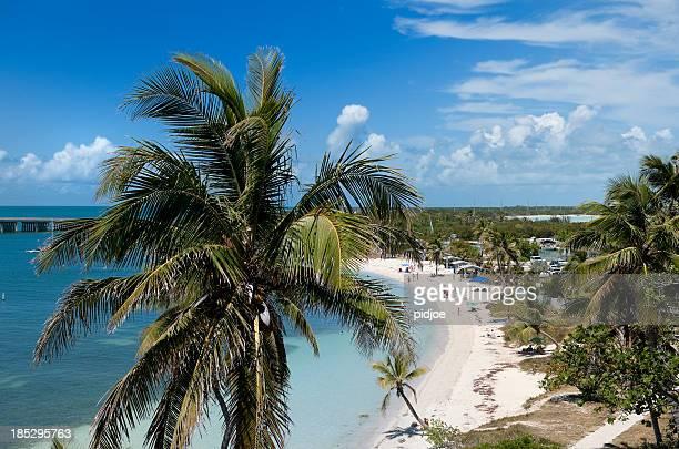 Tropischen Strand mit Palmen