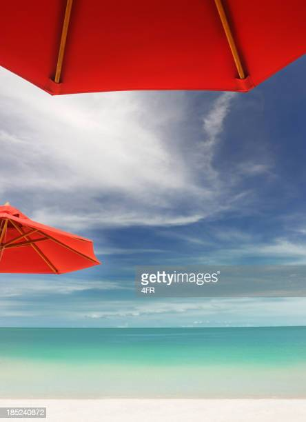 Tropical Beach with Sun Umbrellas (XXXL)