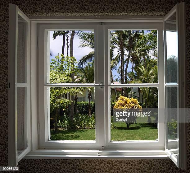 Tropischen Garten