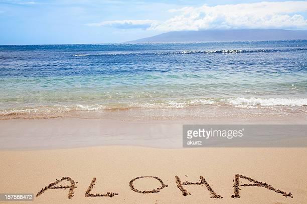 Tropical Hawaiian beach ocean sky type ALOAH welcome vacation