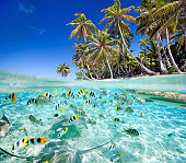 Beautiful tropical island above and underwater, made of 2 photos