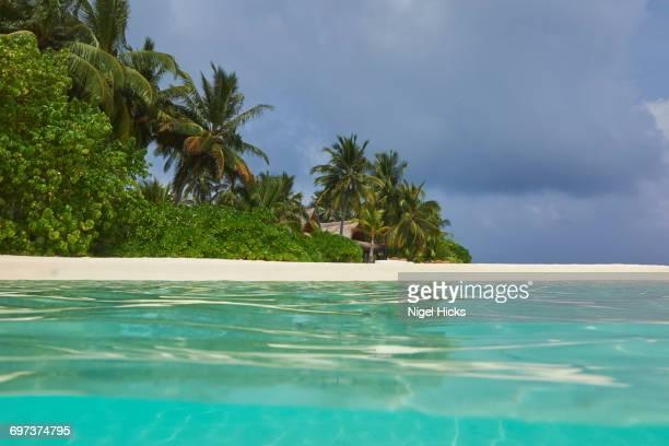 A tropical island beach and seashore