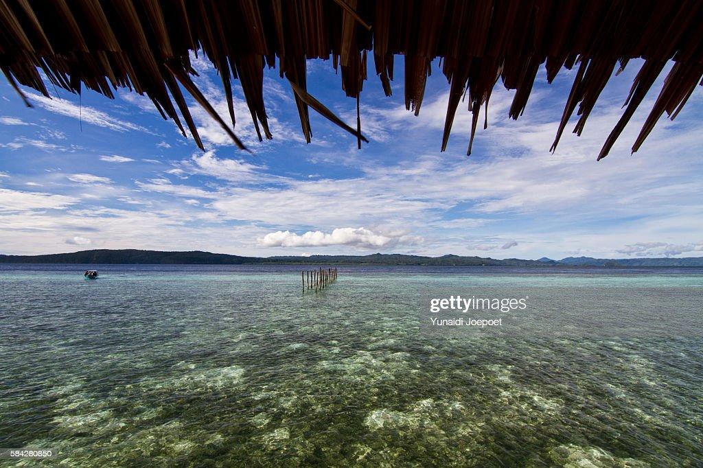 Tropical Island in Asia