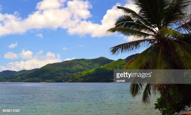 Tropical Island, Praslin, The Seychelles