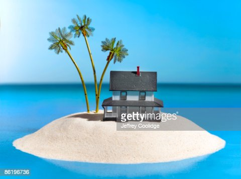 Tropical Island with Toy House