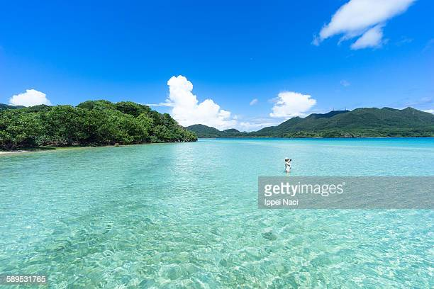 Tropical lagoon beach with clear shallow water