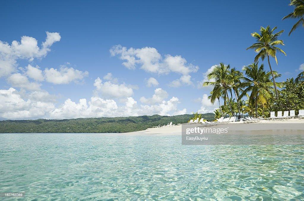 Tropical landscape : Stock Photo
