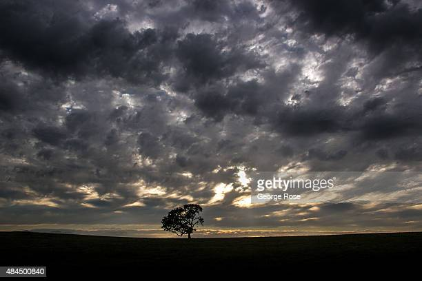 Tropical moisture filters into the Santa Ynez Valley bringing with it dramatic clouds on August 8 near Santa Ynez California Because of its close...