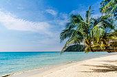 View on tropical palm beach on Koh Kood island - Thailand