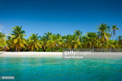 Tropical paradise Beach : Stock Photo