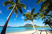 Tropical paradise in South Pacific