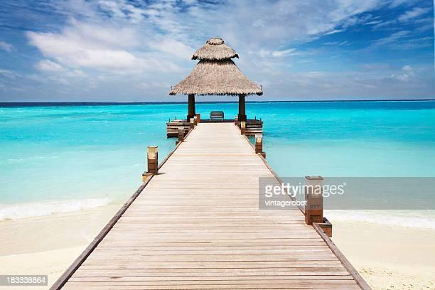 Muelle de Tropical