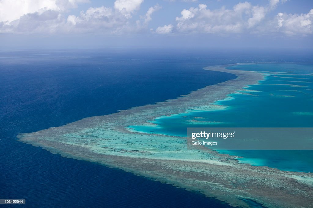 Tropical reef, Great Barrier Reef, Queensland, Australia : Stock Photo
